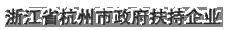 浙江省杭州市政府扶持企業